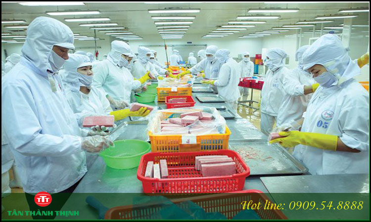 Doanh nghiệp sản xuất là gì? So sánh DN sản xuất và DN thương mại